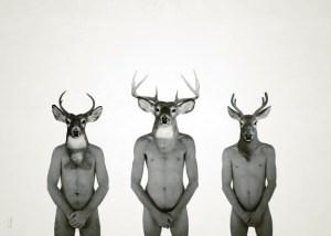 Le cerf et ses fils / Luc Pallegoix, 2014. Encre pigmentaire sur papier Moab blanc 300 gr. Disponible en grand format  50 x 70 cm 5 ex. 
