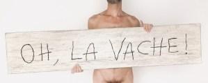 Oh, la vache ! / Luc Pallegoix, 2015. Série : Planches brodées – Embroidered board. Acrylique sur bois brodé au Phentex, 154 x 33 cm.