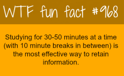 Facts About Awesome Intersting Awesome Information Facts Funny Interesting Weird Facts