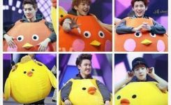 Exo Chick Game On Happy Camp