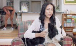 A Scene From The Funny New Spca Ads Screengrab Good Hope Spca