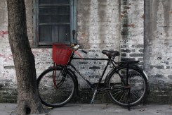 Bicycle, Guangzhou, Guangdong