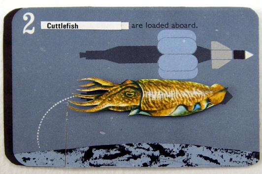 02 cuttlefish loaded