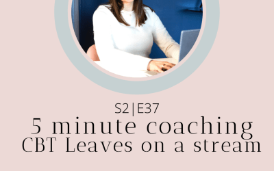 S2|E37 5 minute coaching – CBT Leaves on a Stream