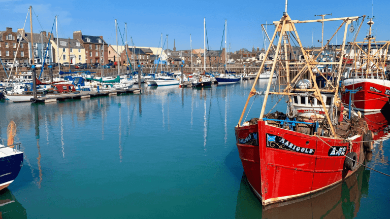 things to do in arbroath