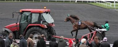 Le cheval face à la machine : Un Mec d'Héripré
