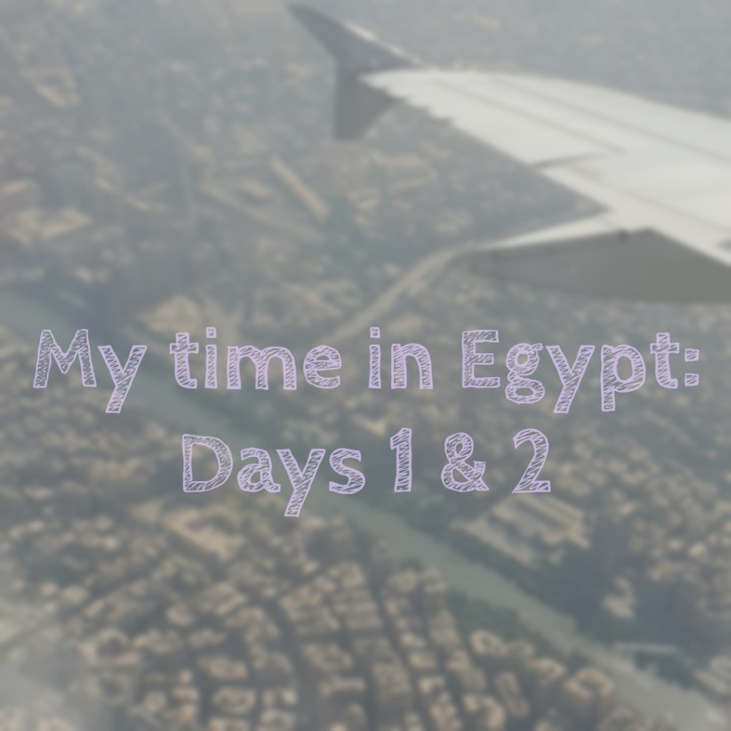 My time in Egypt: Days 1 & 2