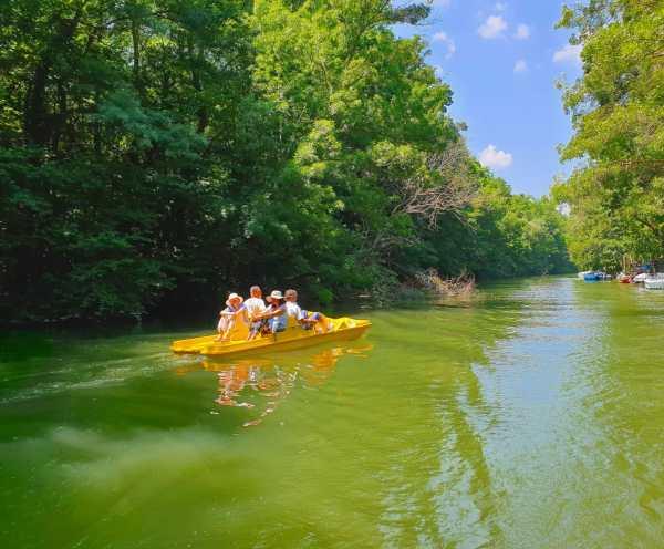 Paddle Boat in river kamchia