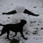 Headless-Lucy-Snowman1-150x150