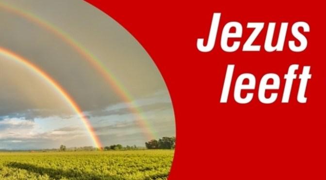 Dampwijzer 2017 – Antwoorden – Jezus Leeft