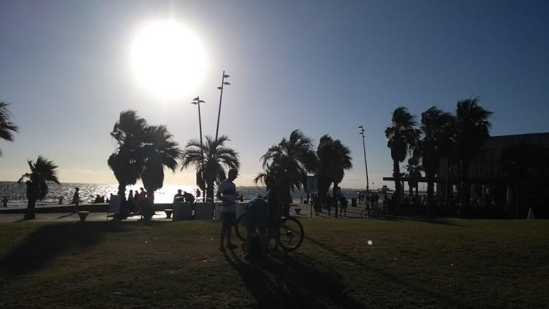 Vivere a Melbourne: lungomare con palme e bicicletta in controluce