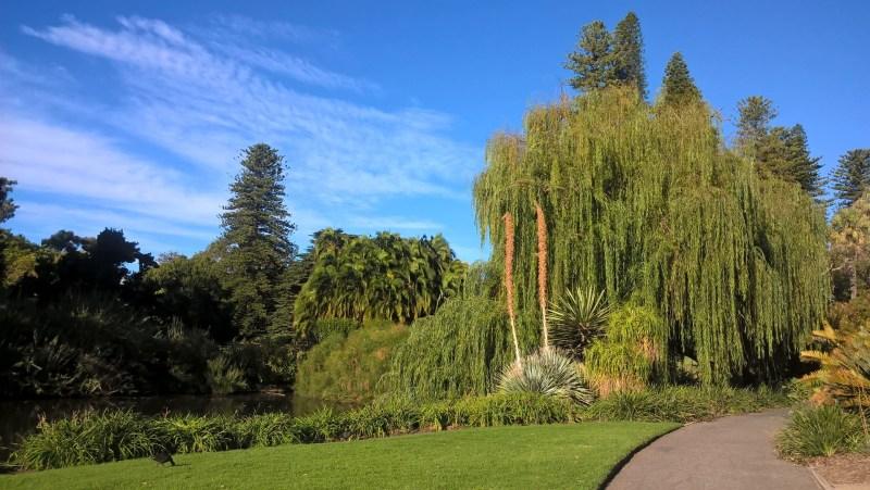 Adelaide, giardino botanico