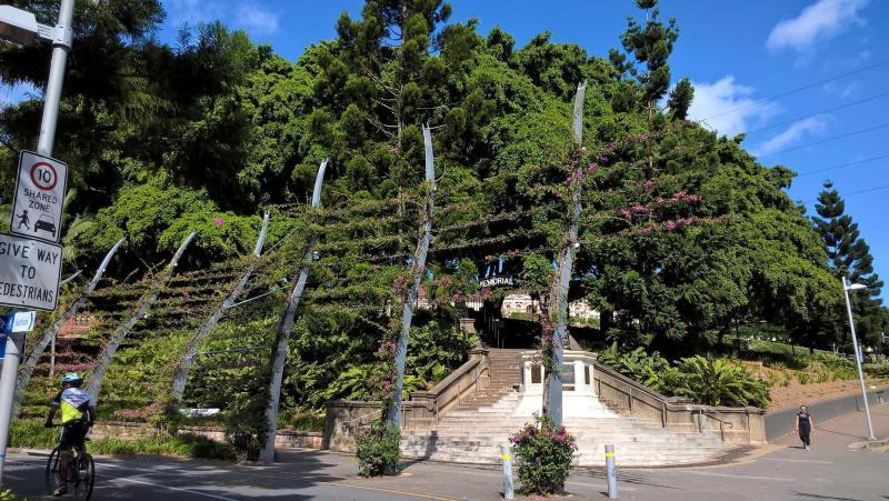 brisbane natura e alberi nelle strade