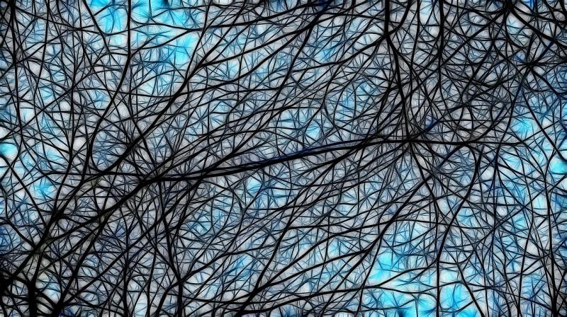 connessioni-tra-neuroni