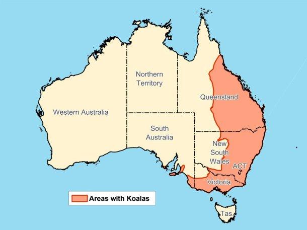 Mappa della distribuzione dei koala in Australia