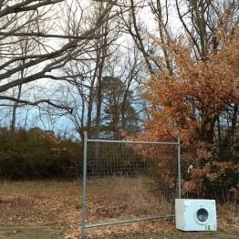 canberra lavatrice abbandonata nella vegetazione