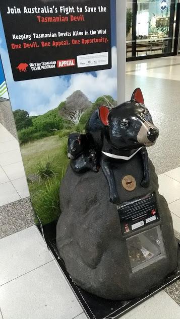 diavolo-della-tasmania-raccogli-offerte