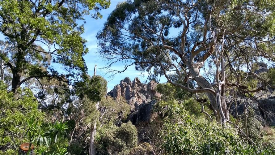 hanging rock da lontano tra gli alberi