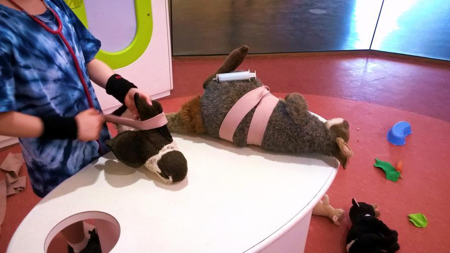 bambino che medica un canguro