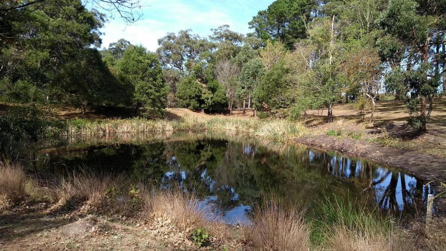 bush con laghetto mornington peninsula