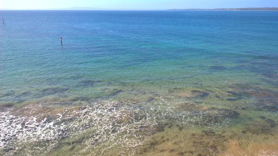 panorama Queenscliff mare pulitissimo verdissimo
