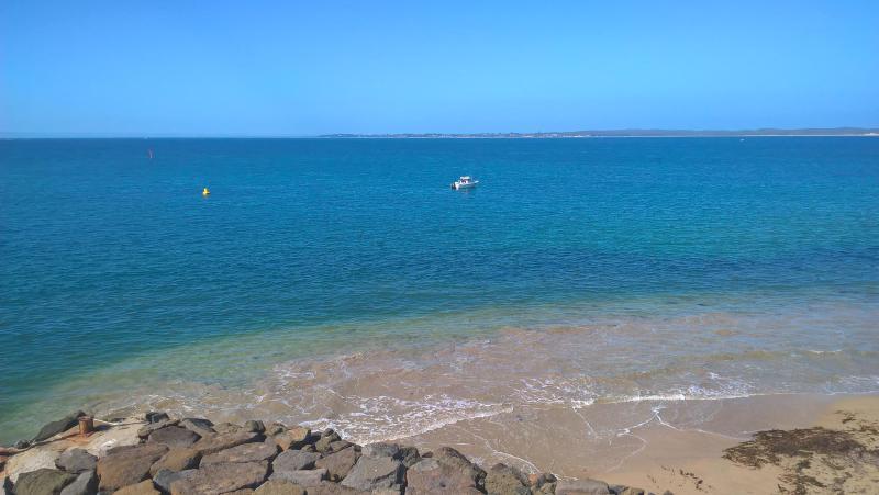 mare queenscliff visto dal traghetto