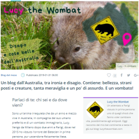 blog dall'australia tra ironia e disagio intervista a lucy the wombat