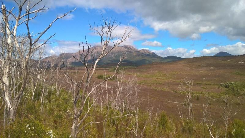 Natura della Tasmania, panorama con montagna