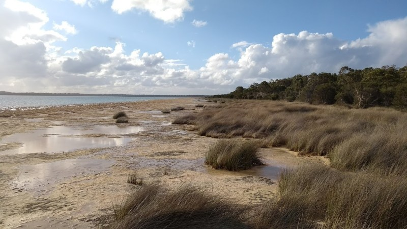 Lake Clifton, Western Australia: panorama naturale dalla passerella di osservazione