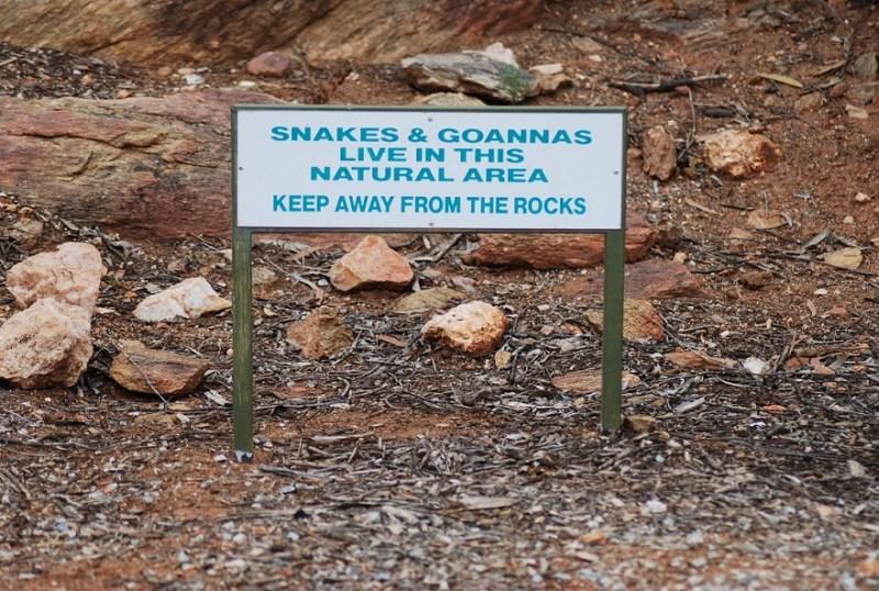 cartello di pericolo: serpenti e varani