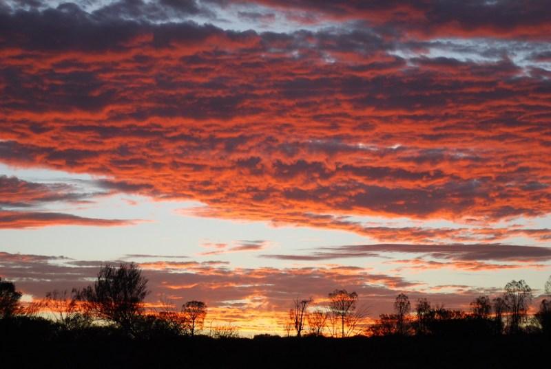 Cielo rosa a Uluru