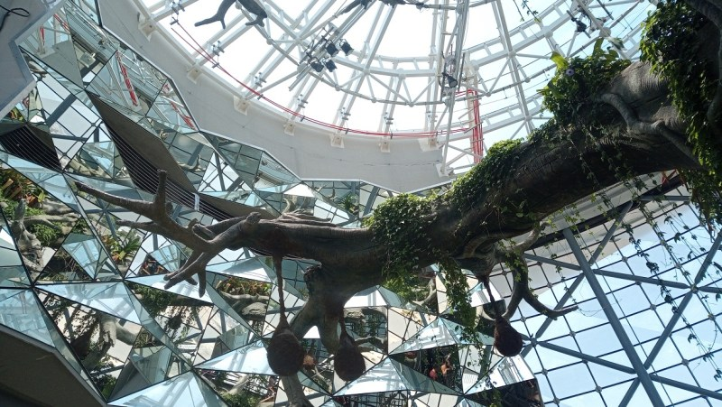 The Green Planet Dubai interno