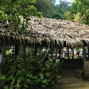 What to See & Do in Guam Micronesia - Lucy Williams Global