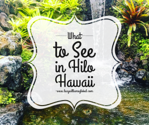 What to See in Hilo Hawaii USA - Lucy WIlliams Global