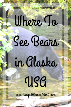 Where To See Bears in Alaska USA - Lucy Williams Global