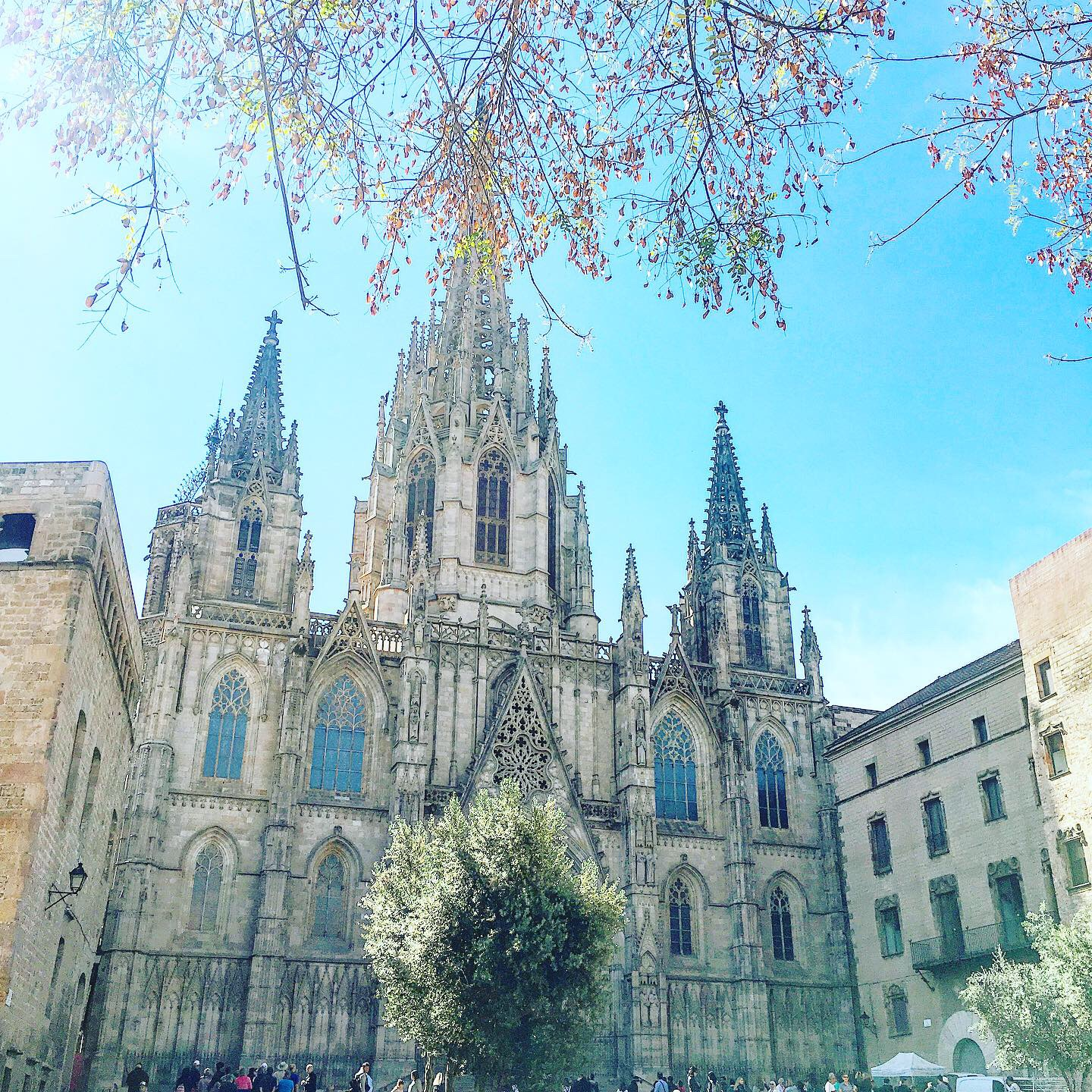 Barcelona Spain - Lucy Williams Global