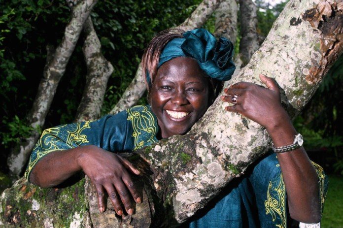 Every Tree has a Personality: Reflections on the Radical Environmentalist, Wangari Maathai – Lucy Writers Platform