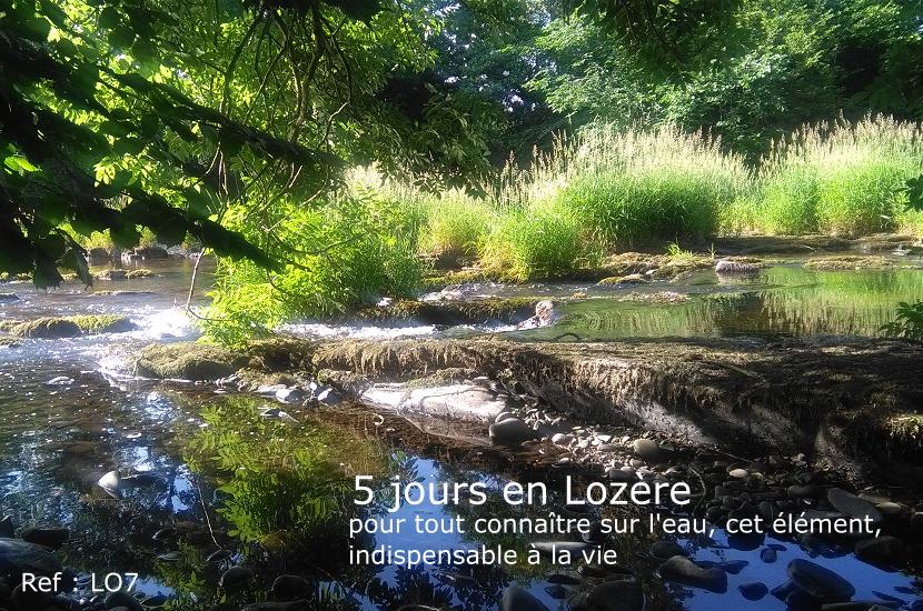 Lozère-LO7