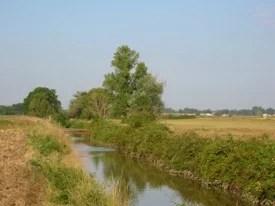 le marais de rigaud - Espaces naturels