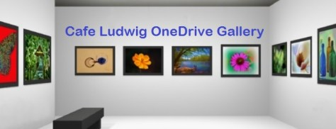 CafeLudwig OneDrive Gallery