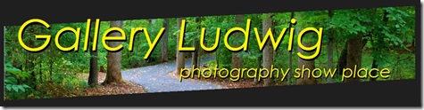 GalleryLudwig-blog header