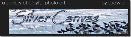 SilverCanvas-blog header
