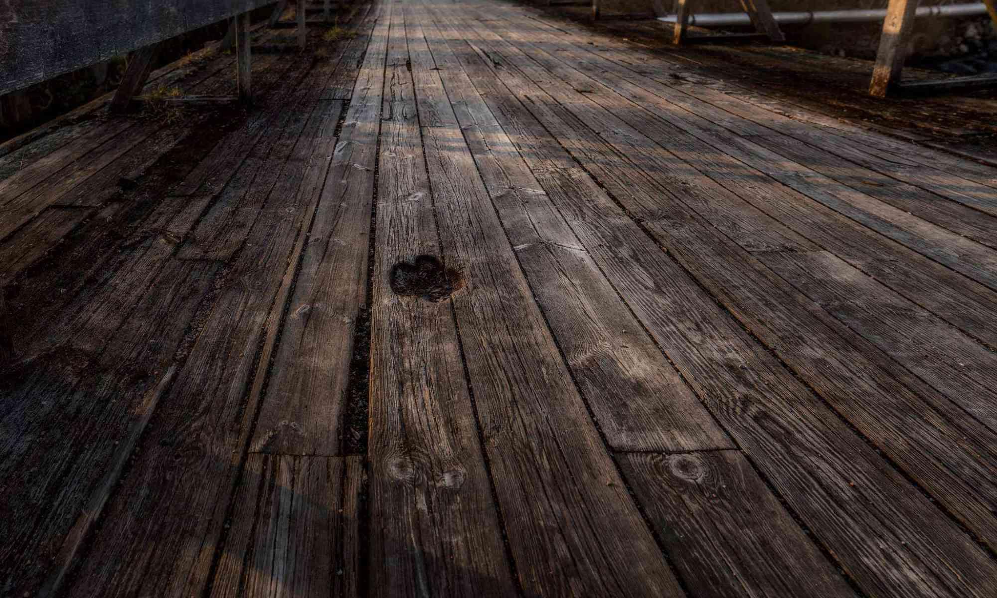 Avtrycket i bron liknar ett tassavtryck - Ludwig Sörmlind
