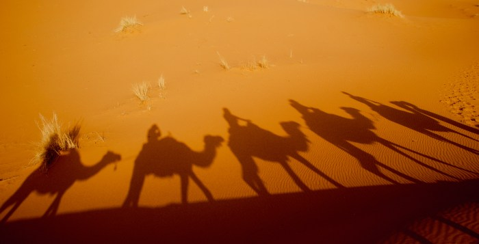 Deserto do Saara. Foto por Karina Cordeiro.