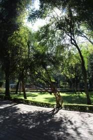 Park in Santiago de Querétaro