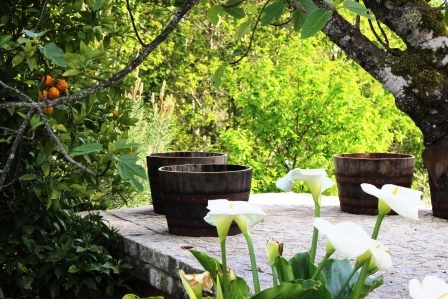 foto deel uitzicht terras hoofdhuis lugar do pego