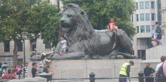 Los Leones de Trafalgar Square - Londres