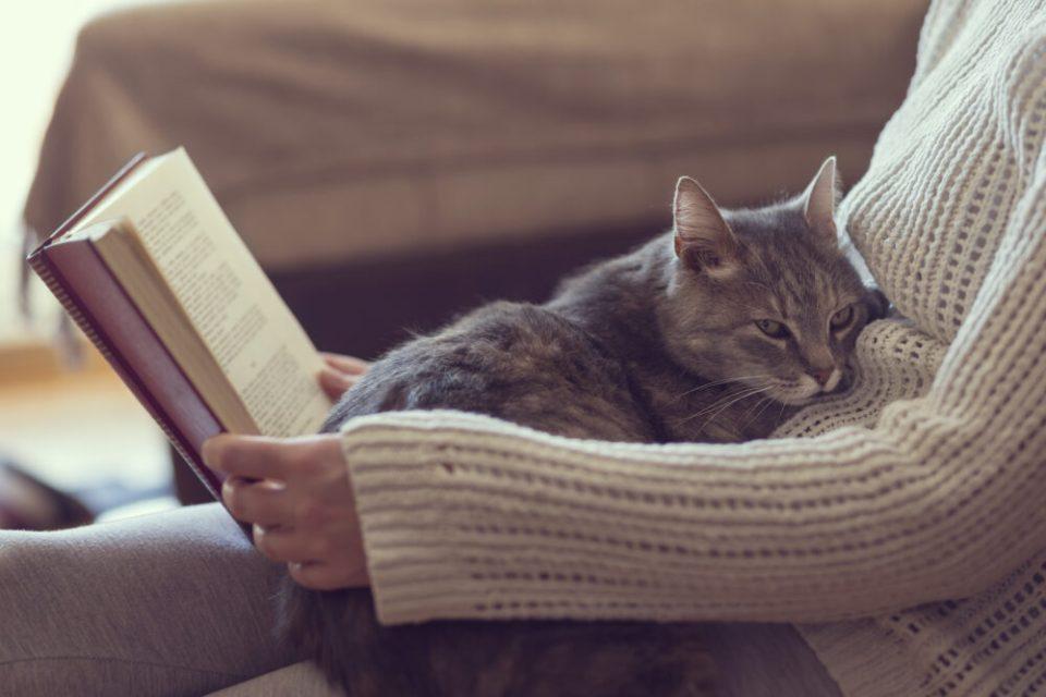 cómo viajar sin levantarte de tu sofá