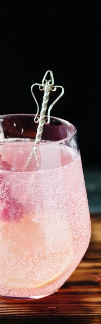 Gin Tonic L'Ugo