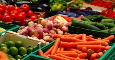 Lugoj Expres Sprijin pentru producătorii agricoli: Centru-pilot de colectare legume-fructe, în Timiș Timiș Roxana Iliescu producătorii agricoli colectare legume fructe centru pilot asociația producătorilor agricoli